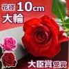 プロポーズに大輪の薔薇