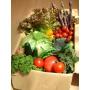 旬の野菜詰め合わせ「野菜ボックス」