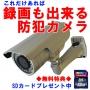 防犯カメラ SD録画 屋外防水 夜間暗視 960H 52万画素 MTW-SD02HIR