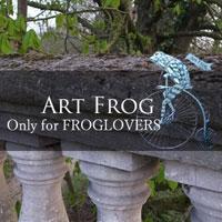 Art Frog